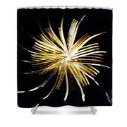 Golden Forks 1 Shower Curtain