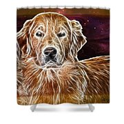 Golden Glowing Retriever Shower Curtain