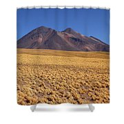 Golden Grasslands And Miniques Volcano Chile Shower Curtain