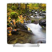 Golden Grove Shower Curtain by Mike  Dawson