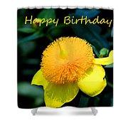 Golden Guinea Happy Birthday Shower Curtain