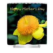Golden Guinea Happy Mothers Day Shower Curtain