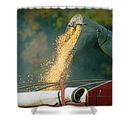 Golden Harvest Shower Curtain