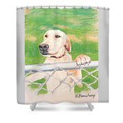 Golden Lab Wally Shower Curtain
