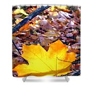 Golden Leaf Shower Curtain