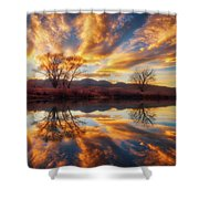 Golden Light On The Pond Shower Curtain