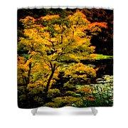 Golden Maple Shower Curtain
