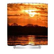 Golden Marsh Shower Curtain