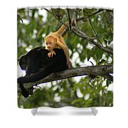 Golden Monkey Shower Curtain