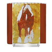 Golden Morning Shower Curtain by Candace Shrope