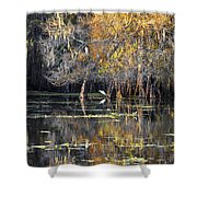 Golden On The River Shower Curtain