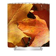 Golden Orange Shower Curtain