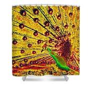Golden Peacock Shower Curtain