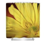 Golden Petals Shower Curtain