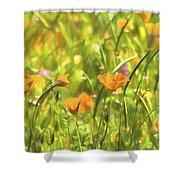 Golden Poppies In A Gentle Breeze  Shower Curtain