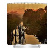 Golden Refelctions Shower Curtain