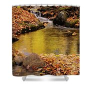 Golden Reflections In A Stream On The Blanchet Trail Gatineau Pa Shower Curtain
