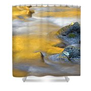 Golden Refuge Shower Curtain