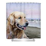 Golden Retriever At The Beach Shower Curtain