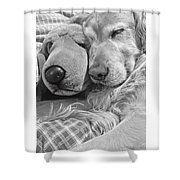 Golden Retriever Dog And Friend Shower Curtain