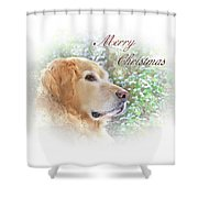 Golden Retriever Dog Merry Christmas Card Shower Curtain