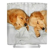 Golden Retriever Dog Puppies Sleeping Shower Curtain by Jennie Marie Schell