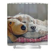 Golden Retriever Dog Sleeping With My Friend Shower Curtain by Jennie Marie Schell