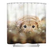 Golden Retriever Shower Curtain