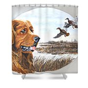 Golden Retriever With Marsh Scene Shower Curtain