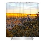 Golden Ridge Shower Curtain