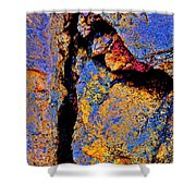 Golden Rocks Shower Curtain