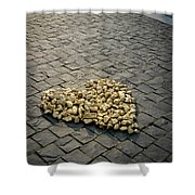 Golden Rocky Love Shower Curtain by Mary Lee Dereske