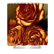 Golden Roses 3 Shower Curtain