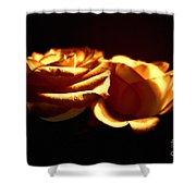 Golden Roses 5 Shower Curtain