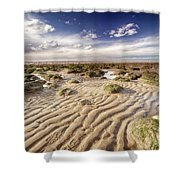 Golden Sand Lines And Seaweed Rocks Of Norfolk Shower Curtain