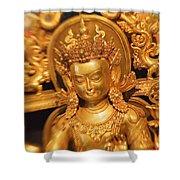 Golden Sculpture Shower Curtain