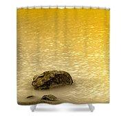 Golden Silence Shower Curtain