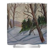 Golden Sky In The Snow Shower Curtain