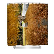 Golden Streets Shower Curtain