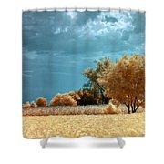 Golden Summerscape Shower Curtain by Helga Novelli