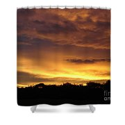 Golden Sunset 1 Shower Curtain