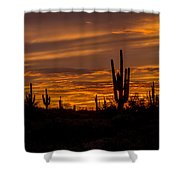 Golden Sunset Sky Shower Curtain