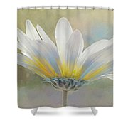 Golden Sunshine On A Most Splendid Daisy Shower Curtain
