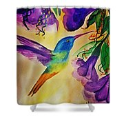Golden Tailed Sapphire Shower Curtain