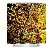 Golden Texture Abstract Shower Curtain