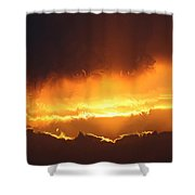 Golden Tiger Shower Curtain