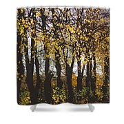 Golden Trees 1 Shower Curtain