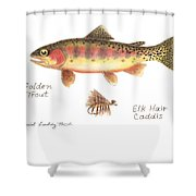 Golden Trout And Elk Hair Caddis Fly Shower Curtain