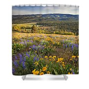 Golden Valley Shower Curtain