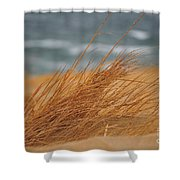 Golden View Shower Curtain